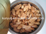 Canned Fried Peanuts with High Quality