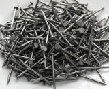 High Quality Polished Common Nail