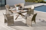 Outdoor Rattan Furniture Garden Barcello / Cancun Round Wicker Dining Set (J639)