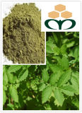 Factory Supply Agrimony Plant Extract Powder 5: 1, 10: 1, 2o: 1