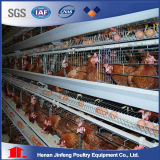 Jinfeng Design Chicken Layer Cages for Sale/Poultry Layer Chicken Cage