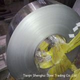 Professional Manufacturer Stainless Steel Strips (AISI202)