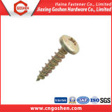 Competitive Prices Cross Pan Head Self-Tapping Screw