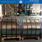 Prepainted Colored Galvanized Aluminum Steel Coil