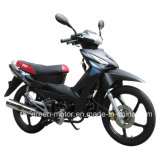 110cc/100cc/70cc/50cc Motorcycle (New Wolf)