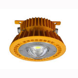 L01 High Light Source for Industry Use LED Outdoor Lights