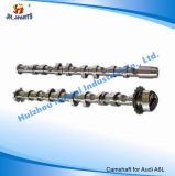 Auto Spare Parts Camshaft for Volkswagon/Audi C6 2.0t