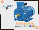 Y3 Series Three-Phase Induction Motor