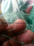 Monofilament Fishing Tackle Green Nylon Fishing Net