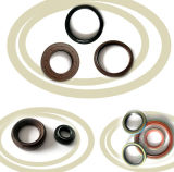 Supply OEM ODM Oil Seal for Car/Truck/Motorcycle