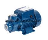 Popular Qb Series Peripheral Water Pump