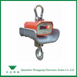 Digital Weighing Scale for Gantry Crane