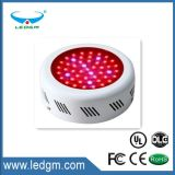 70-75W Gp LED Light for Plant Grow Indoor Grow Lamps