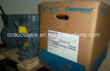 Dlfe-201-Ewl 2HP Dwm Copeland Semi-Hermetic Compressor