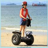 Two Wheeled Self Balancing Super Pocket Bike