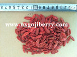 Ningxia Dried Goji Berry 180grains/50g