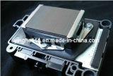 Dx5 Print Head 1440dpi