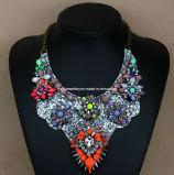 Shourouk Style Fashion Necklace/Fashion Jewelry (XJW13176)