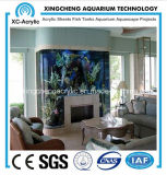 The Family of Embedded Aquarium