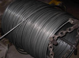 Low Catbon Steel Wire Rod for Nails