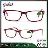 New Design Acetate Glasses Optical Frame Eyewear Eyeglass