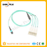 Optical Fiber Patch Cord with MPO Mu DIN D4 Connector