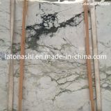 Cheap Italy Calacatta White Marble Tile for Flooring/Wall, Backplash, Countertop
