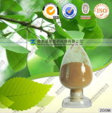 FDA Registered Manufacturer Supply Ginkgo Extract