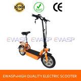 F/R Disc Brake 36V300W E Scooter High Speed City Electric Bike