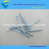 China Suppliers Cheap Price Concrete Nails /Concrete Steel Nail