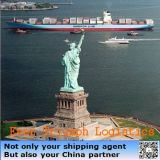 Cheap Sea Shipping Rates From China to USA