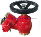 "2.5"" BS Screwed Fire Hydrant Landing Valve"