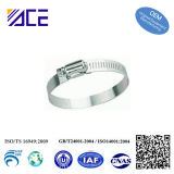 """1/2"""" Band Worm Gear Hose Clamp"""