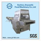 Coating Machine for Chocolate Enrobing Line (QTYJ900B)