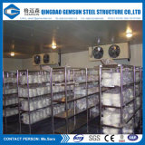 Sales Service Provided and Ce Certification Cold Storage