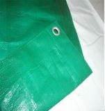 China Green PE Tarpaulin Cover