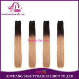Ombre Brazilian Remy Human Hair Extension Weft