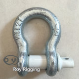 Us Type HDG Drop Forged Shackle