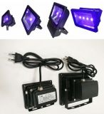 Projector LED 50W Outdoor UV Lighting Hot Sale on Amazon