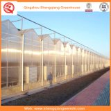 Flower/Fruit/Vegetables Growing PC Sheet Green Houses with Sunshade System