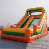 Classical Commerical Grade Inflatable Bouncy Slide (SL-013-1)