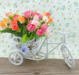 New Popular OEM Bicycle for Flower Pot
