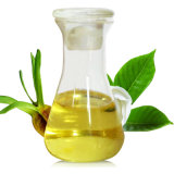 100% Gardenia Fruit Is Natural Plant Essential Oil