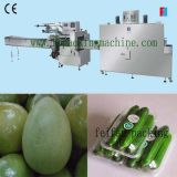 Automatic Flow Shrink Wrapping Machine