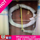 Rich Factory Price DIN741 Wire Rope Clip Galvanized Wire Clamp Wholesale
