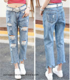 Fashion Casual Ladies Ripped Denim Jeans