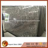 Imported Hot Selling Bianco Antico Granite Paving Big Slab