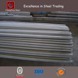 Hot DIP Galvanized Round Steel Rod (CZ-R18)