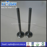 Engine Valves for Nissan/ Deutz/ Daewoo Ne6 Parts