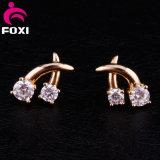Inlay Crystal Rhinestone Earrings Ear Jewelry